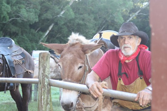 Molokai Mule Ride : Buzzy the muleskinner