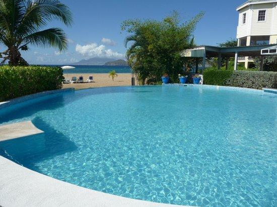 Nelson Spring Beach Resort: Nelson Spring-Infinity Pool