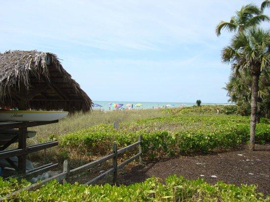 Lowdermilk Beach: The Park