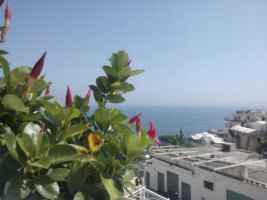Hotel Villa delle Palme: Vista mare