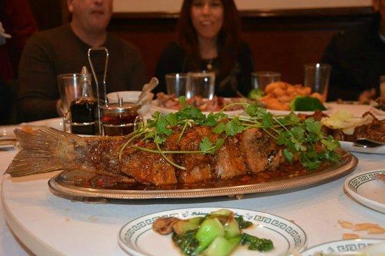 Peking Gourmet Inn : Large Crispy Fish for New Year's celebration