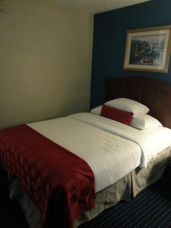 Ramada Pooler/savannah : clean and comfortable bed