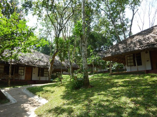 Spice Village : bungalows