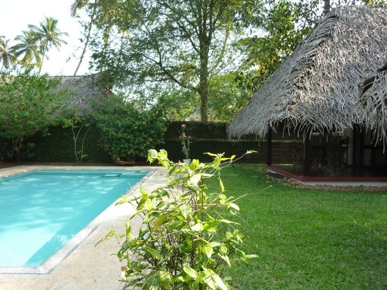 Marari Beach Resort : deluxe pool villa terrace and pool