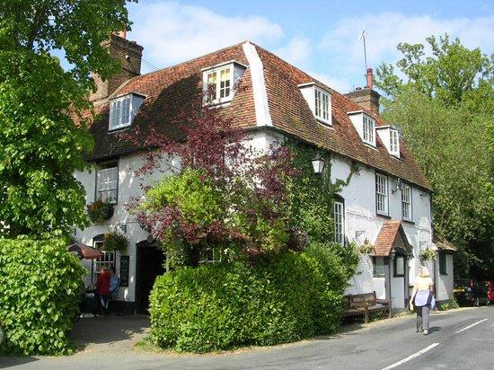 Hotels Near Box Hill Surrey