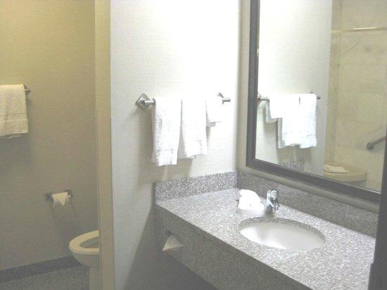 Drury Inn & Suites Valdosta: Bathroom vanity