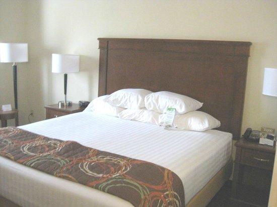 Drury Inn & Suites Valdosta : King bed with multiple pillows