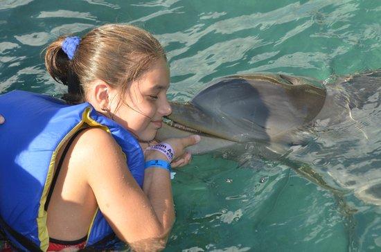 Dolphin Discovery Tortola: dolphin kiss