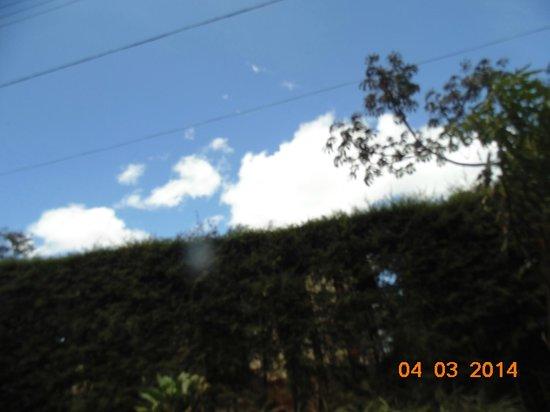 Pousada Verde Folhas : Sempre o verde e o céu azul