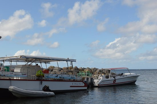 Dive St. Kitts: boats
