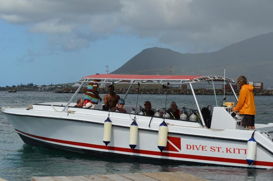 Dive St. Kitts: Crabby