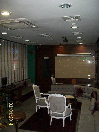 Gulhane Park Hotel : espace bar