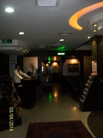 Gulhane Park Hotel : espace lobby
