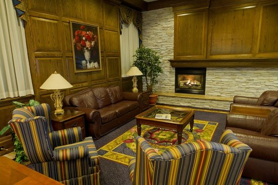 Comfort Inn Lundy's Lane: Relax in front of the Fireplace and read.