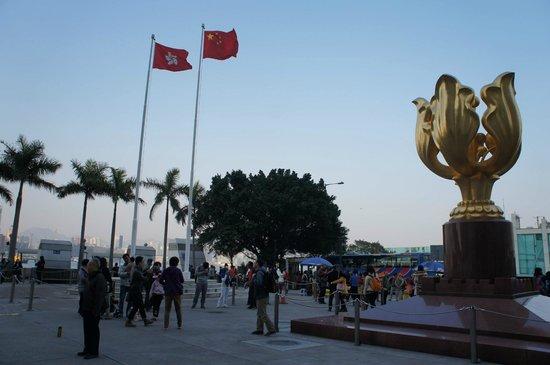 Golden Bauhinia Square : Golden Bauhinia