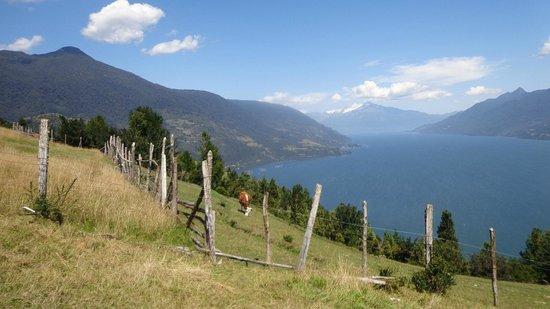 Las Bandurrias Eco Hostal : vue en randonnée proche de la maison