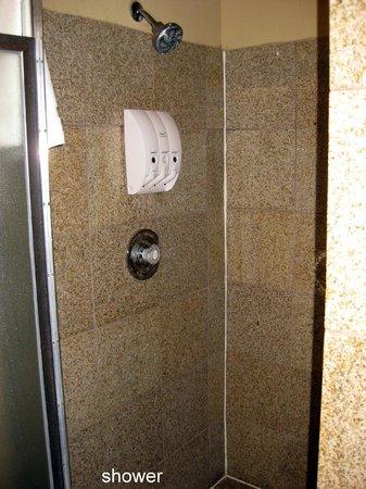 Best Western Kettleman City Inn & Suites : shower