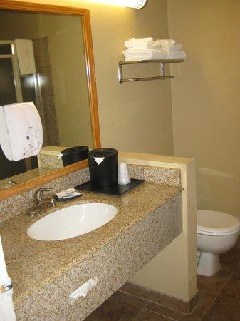 Best Western Kettleman City Inn & Suites: bathroom sink