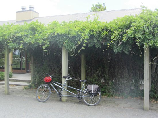 Bike 2 Wine: Parked Up at a Vineyard