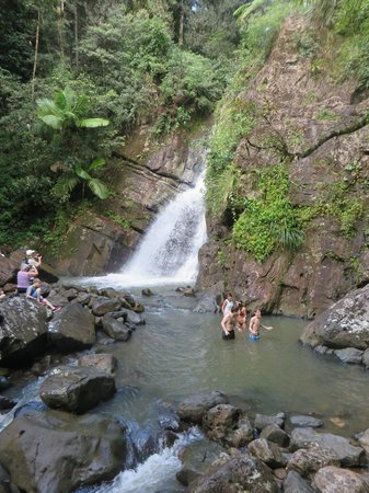 El Yunque Tours: The best waterfall to swim in ever!
