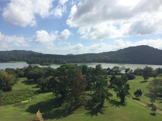 Gamboa Rainforest Resort: View