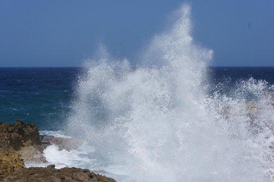 Shete Boka National Park: The waves are 30ft high