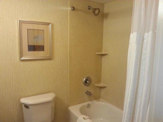DoubleTree by Hilton Hotel Tinton Falls - Eatontown: Bath 2
