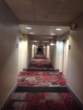 Holiday Inn Express Canandaigua - Finger Lakes: 3rd floor Hallway