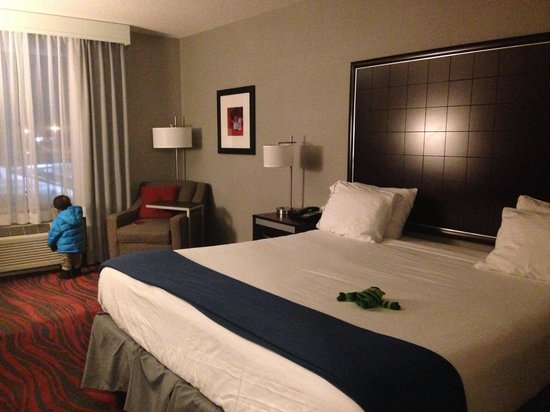 Holiday Inn Express Canandaigua - Finger Lakes: King Bed Room
