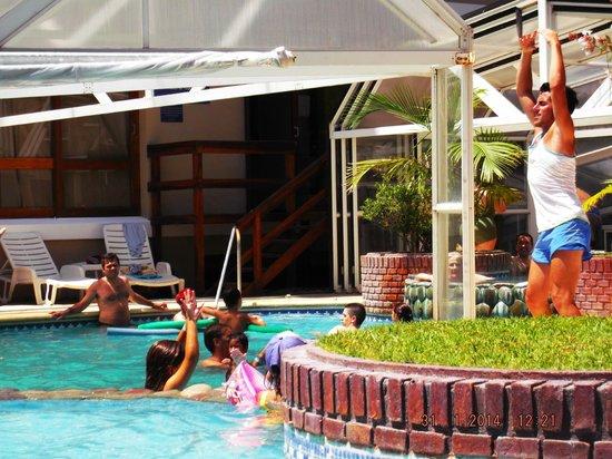 Hotel Chiavari : Profesor divertido