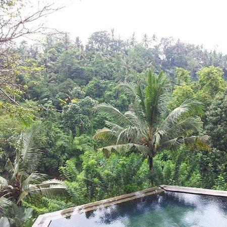 Beji Ubud Resort: View of main infinity pool
