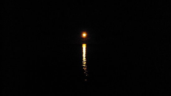 TovuTovu Resort: Moonlight on the water across the street
