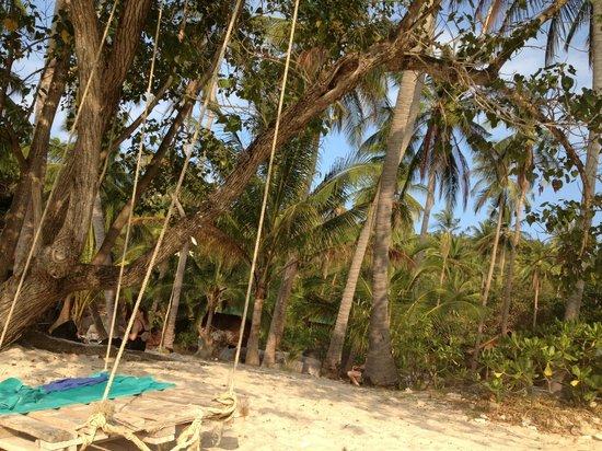 Koh Tao Bamboo Huts: Saunsin beach, swing at the beach