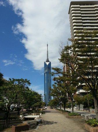 Fukuoka Tower: 天気がいいときれいですね。