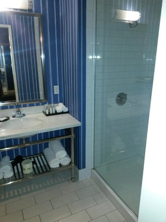 University Plaza Waterfront Hotel: oh and the bathroom's opaque sliding door is awesome!!