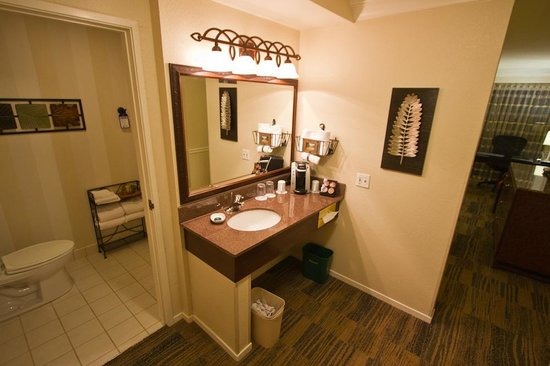 BEST WESTERN PLUS Novato Oaks Inn : Bathroom area.