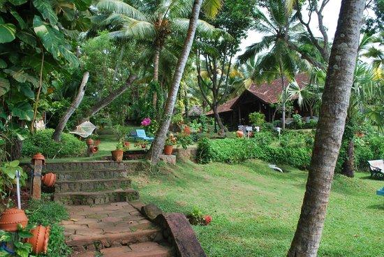 Somatheeram Ayurveda Resort: nature
