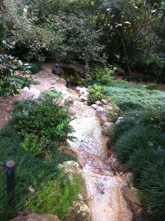 White Garden Picture Of Bayou Bend Collection And Gardens Houston Tripadvisor