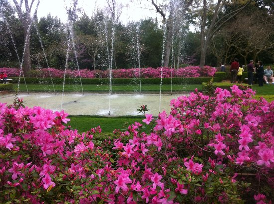 Diana Garden Picture Of Bayou Bend Collection And Gardens