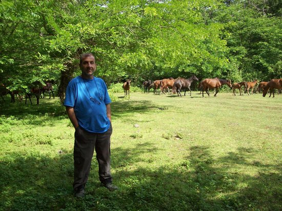 Talesh, Ιράν: Gisoom Jungle Park