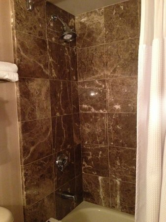 Pensacola Grand Hotel: Awesome bathroom with granite -- fantastic water pressure and water temperature