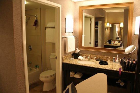Hyatt Regency Hill Country Resort and Spa : Vanity