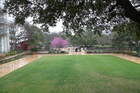 Hyatt Regency Hill Country Resort and Spa: Grounds