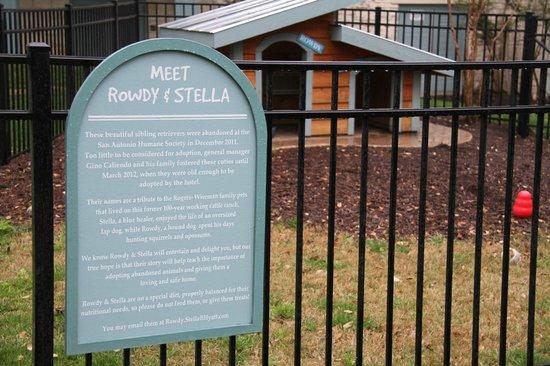 Hyatt Regency Hill Country Resort and Spa: Rowdy & Stella's home