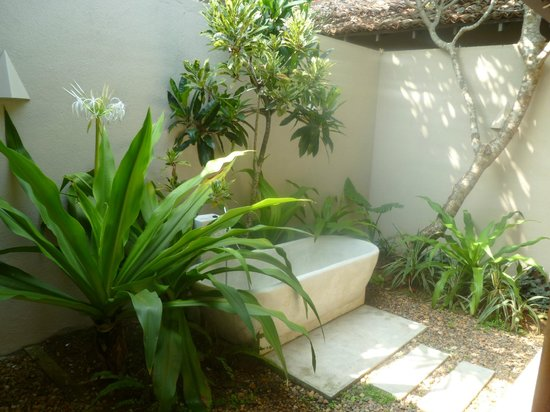 The Frangipani Tree by Edwards Collection: Olive Ridley outside bathroom