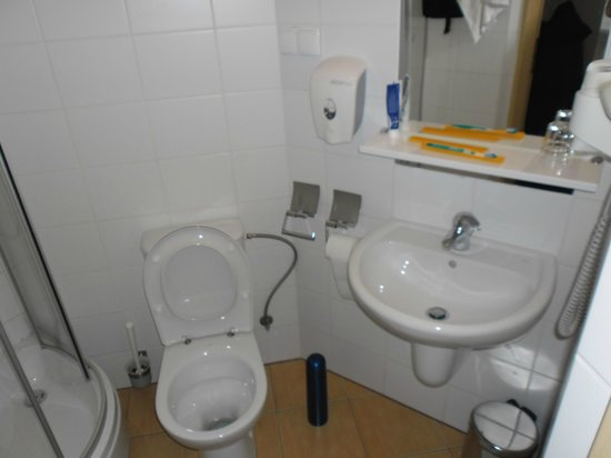 Economy Silesian Hotel : łazienka
