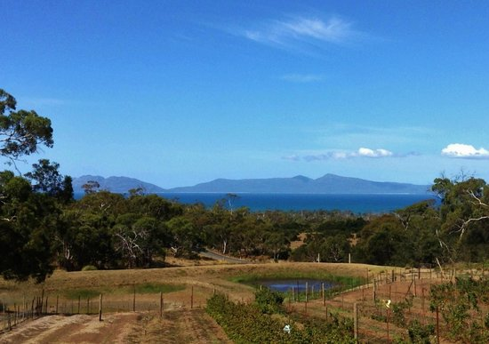 Meredith House and Mews: View across to Freycinet at Kate's Berry Farm
