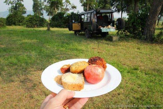 Rekero Camp, Asilia Africa: Pic nic