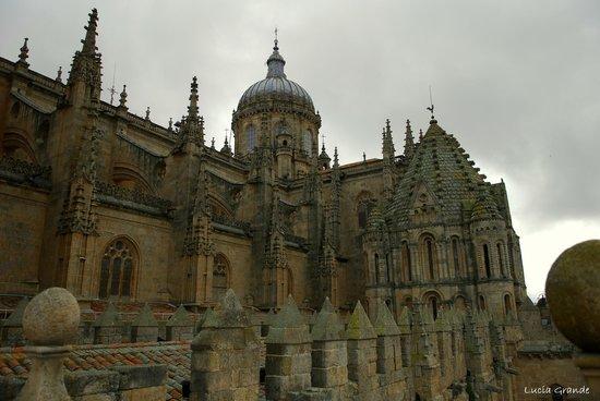 Ieronimus: vistas de la catedral desde la terraza