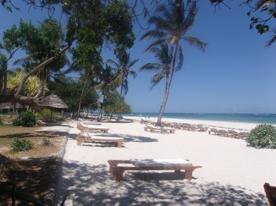 Ocean Village Club: plage de l'hotel